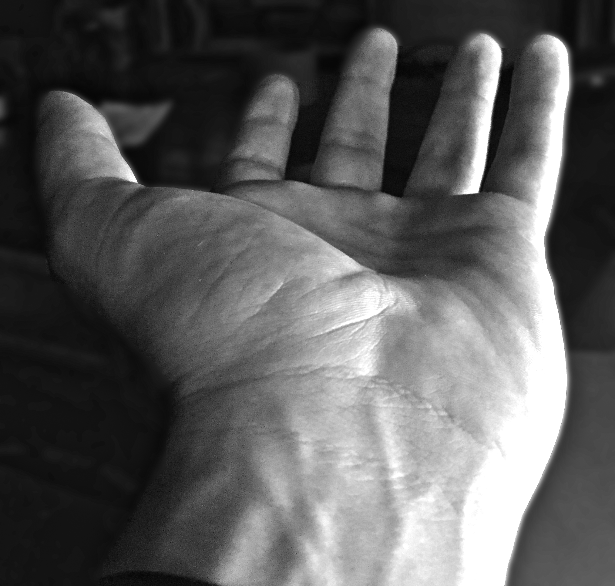 Hand_Photo.png