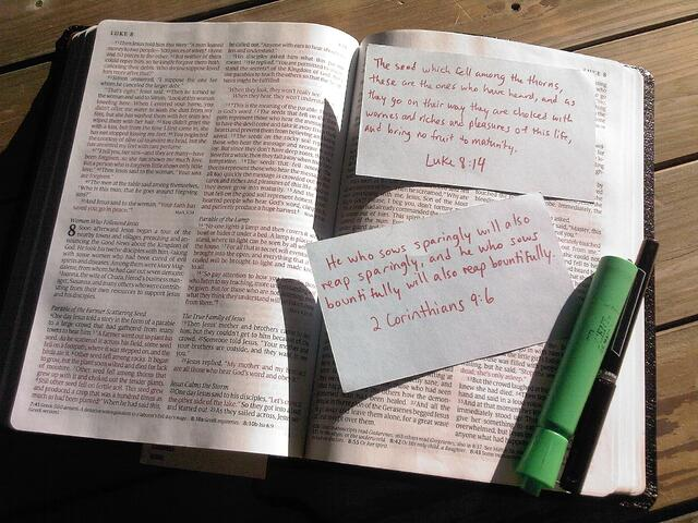 scripture_bible.jpg