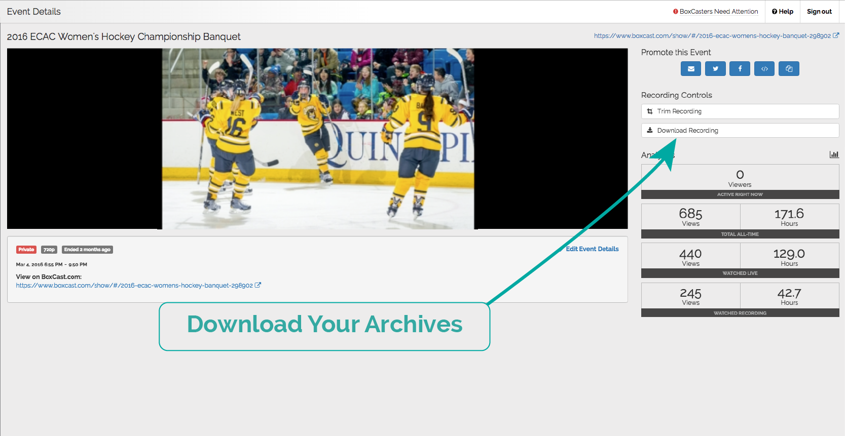 Download your archive straight from your dashboard