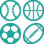 Multi Sport Compatibility Icon 2x