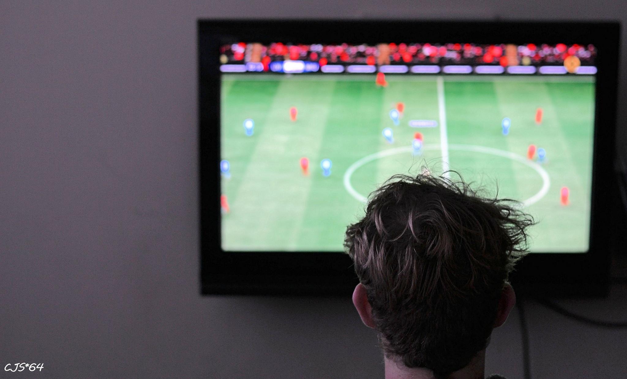 sports_fan.jpg